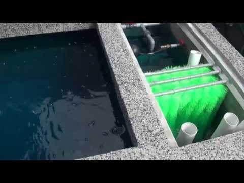 Filter Media Setup And Pumps Installation