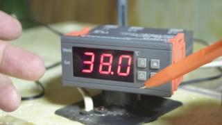 Терморегулятор из Китая - ремонт инкубатора ''Золушка''
