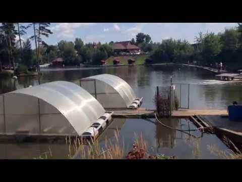 «Золотой Сазан» платный водоем (Новорижское шоссе)
