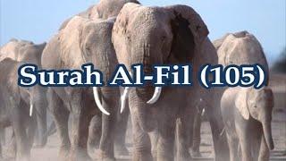 Surah Al-Fil (105) Sheikh Mishary Rashid Al-Afasy