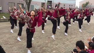 新潟医療福祉大学 舞桃会2年生『光』