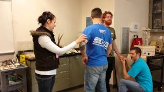 The very most awesome muscle contraction video for Anatomy 231 (with a long and snazzy title too!)