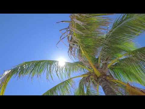 1717 N  Fort Lauderdale Blvd., Fort Lauderdale Fl 33305  $6.995.000