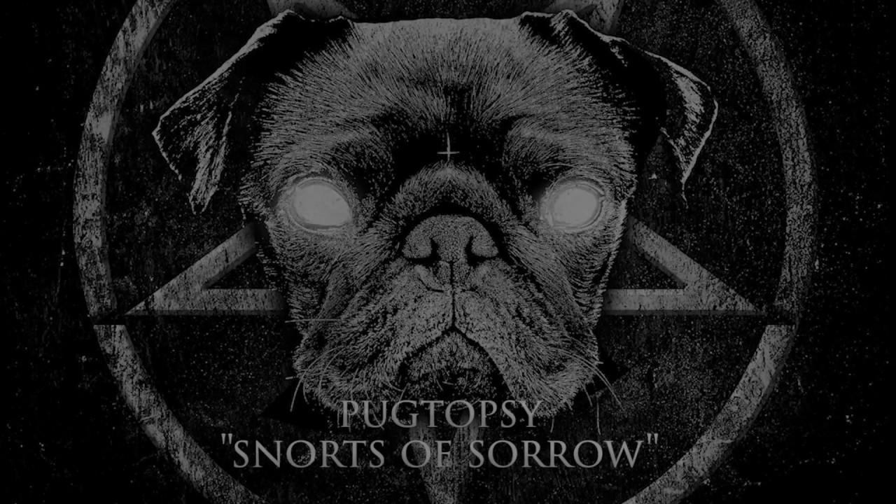 Download Pugtopsy - Snorts Of Sorrow (Music Video)