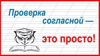 Учёба - это просто! Согласные на конце слова и поиск окончания