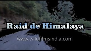 Raid de Himalaya - a short film on the greatest rally in the Himalaya