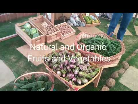 Natural and Organic Vegetables Ravet Pune