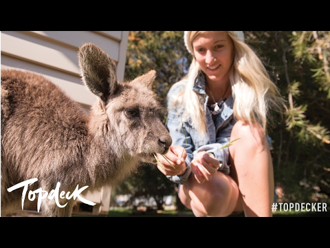 Discover The Best of Australia in 2017 - Topdeck Travel