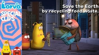 official recycling food waste - special videos by animation larva
