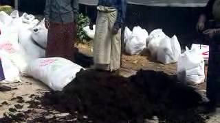 Mushroom Farm Ooty 1