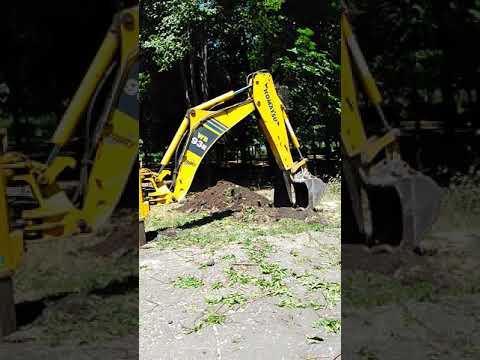 Кто разрешил уничтожить зелёное дерево ? Новогродовка ,