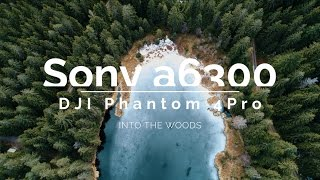 INTO THE WOODS / Sony a6300 & DJI Phantom 4 Pro / 4K