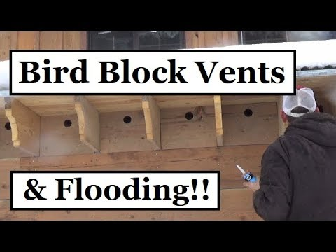 293 Bird Block Vents For Rafters Attic And Flooding More Snow Youtube