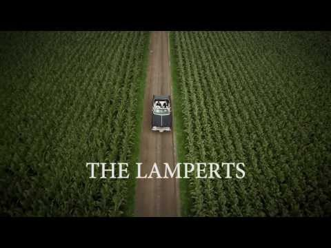 The Lamperts - Reliable Lies (Teaser)