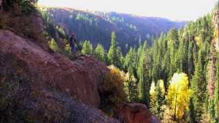 Colorado Elk Hunt (Unit 61-Uncompahgre Plateau)