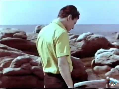 Luigi Tenco - Ho capito che ti amo - Capo Boi  Jolly Estate 1964