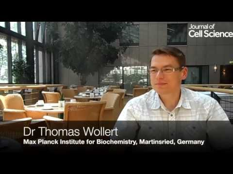 Video interview with Thomas Wollert