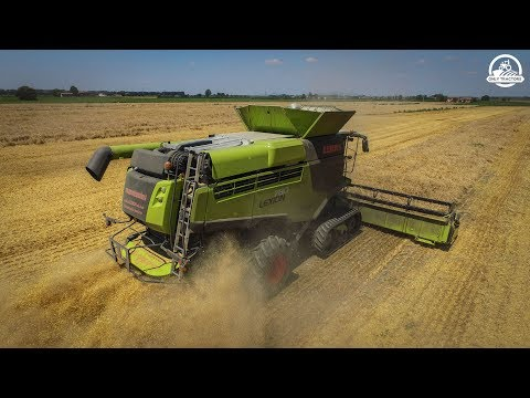 CLAAS LEXION 780 TT Black Line 2018 VERSION | FIRST IN ITALY | ᴴᴰ
