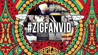 """I Get Up"" – Ziggy Marley (fan Instagram lyric video) | FLY RASTA"