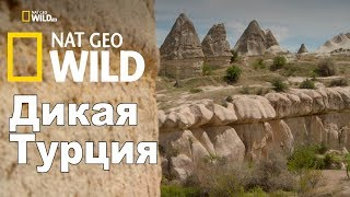 Nat Geo Wild: Дикая Турция / Turkey's Harsh Paradise