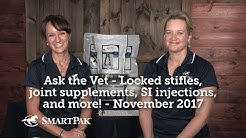 Ask the Vet - Locked stifles, joint supplements, SI injections, and more! - November 2017