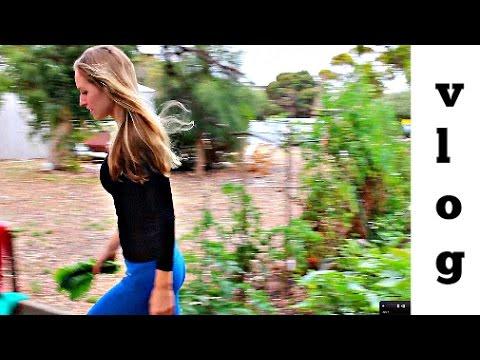 Vlog - Dads Organic Garden + Veg Thai Curry + Bush Walk