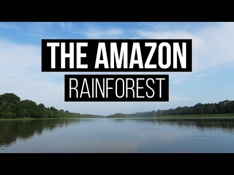 PERU TRAVEL VLOG | The Amazon Rainforest