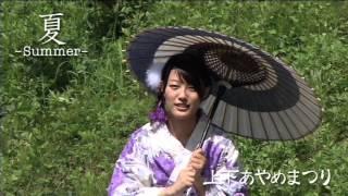 約300種、10万本のあやめが咲き誇る矢野温泉公園四季の里「あやめ園」で...