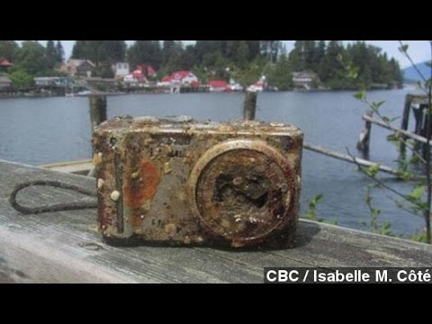 Camera Lost In 2012 Shipwreck Found With Pictures Intact