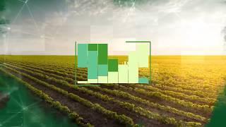 Previsão das chuvas para o Agronegócio