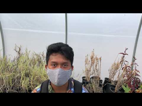 Los Angeles Audubon student intern - Mohamad Lorenzano