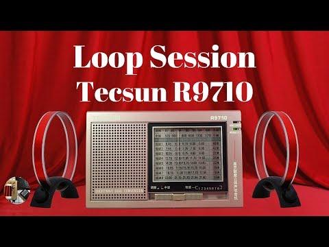 In the Loop Tecsun R9710 AM FM SW Portable Radio