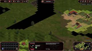 Age of Empires  Definitive Edition 2v2 fast bronge and kill