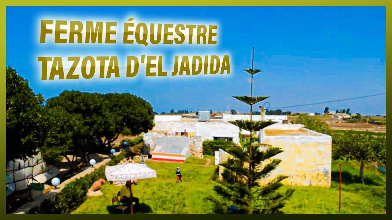 Cauta i gospodina in El Jadida)
