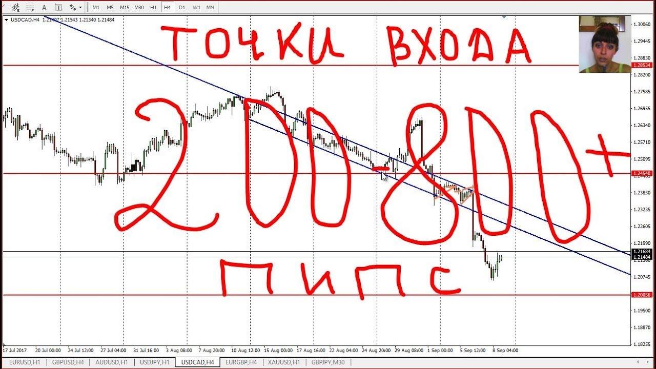 Прогноз форекс торговля биржа торгов форекс что это