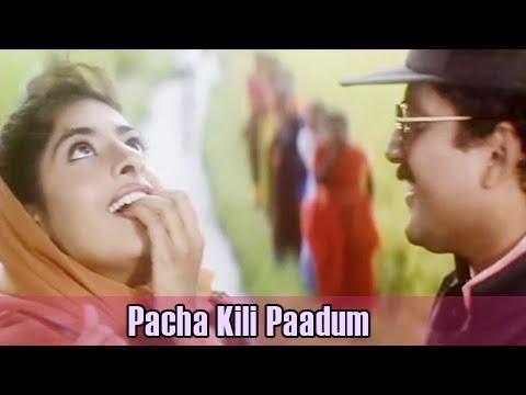 pacha-kili-paadum-|-bharathiraja-hits-|-a.r.rahman-hits-|-karuthamma