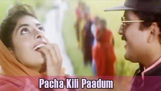 Pacha Kili Paadum   Bharathiraja Hits   A.R.Rahman Hits   Karuthamma