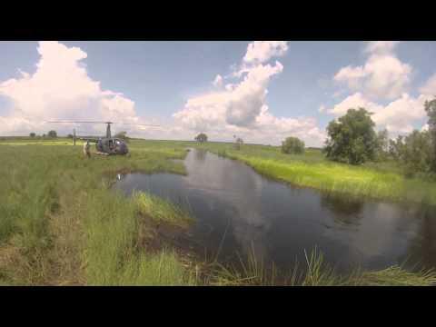 Chopper In, Barra In, Chopper Out, NT!