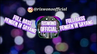 Download Mp3 Dj Dian Anic - Pengen Di Sayang Full Bass | Musik Video