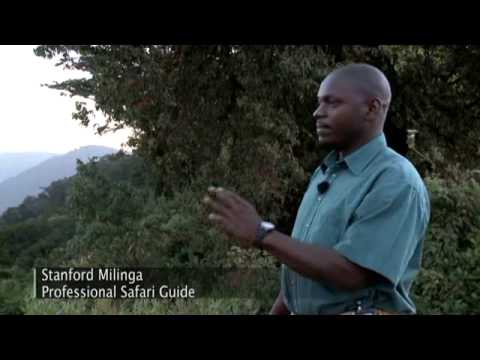 Discoveries Africa, Ngorongoro Crater Preview