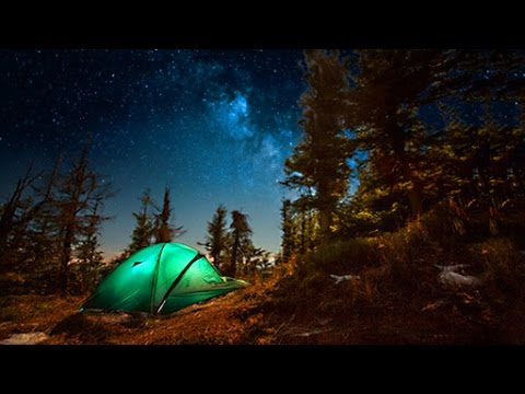 Campfire Sounds - Relaxing Forest and Nature Soundscape: Camping Under the Stars
