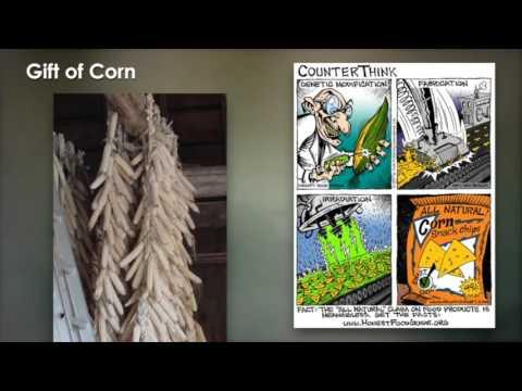 Food Security & Three Sisters Sustainability - Conversations in Cultural Fluency #3