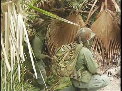combat zone grenada
