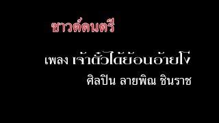 เจ้าตั๋วได้ย้อนอ้ายโง่ [Sound Karaoke] - ลายพิณ ชินราช