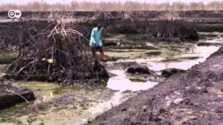 Nigeria: Oil pollution in the Niger Delta | Global 3000