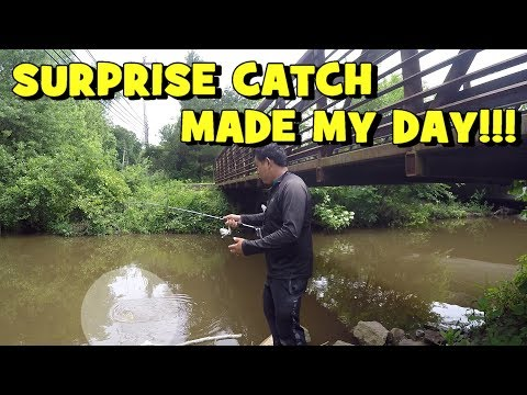 SURPRISE [CHUNKY] Catch MADE MY DAY! (Surprise Catch!) (Unexpected) (FirstState Style Title) :D