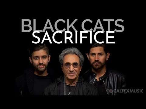 Black Cats - Sacrifice (Audio - Valentine's Day 2020 Version)