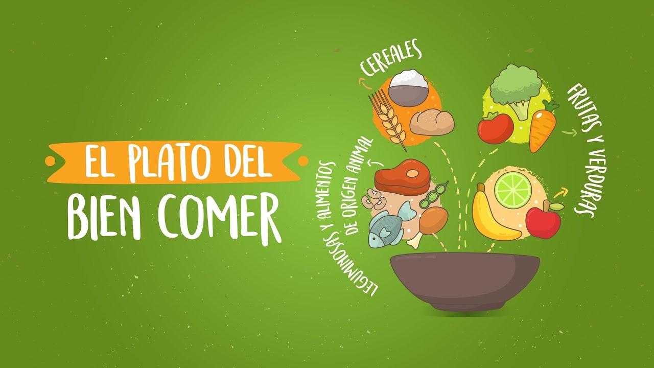 Nutrivloggers El Plato Del Bien Comer Youtube