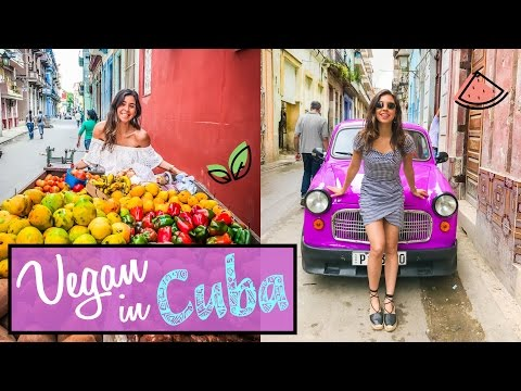WHAT I ATE TODAY | Vegan in Cuba