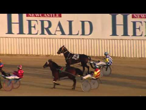 NEWCASTLE - 19/03/2016 - Race 2 - NBN TELEVISION PACE